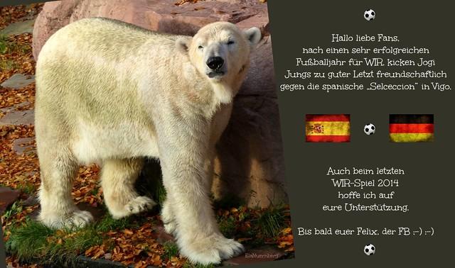 FB Felix - Spanien - WIR - Freundschaftsspiel - 18.11.2014