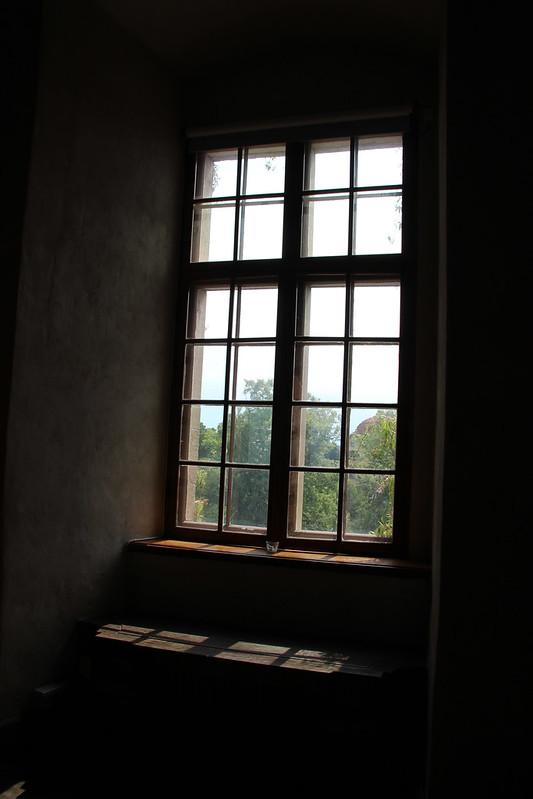 231 av 365 - Fönster