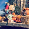 This one had a blast @southernbellefarm today. Pumpkins, cow train, farm animals, those huge jumpy pillow things, and just playing in the dirt. A cowgirl at :heart:️.