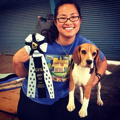 Guess who had a PERFECT WEEKEND at The Bay Team's CPE agility Trial, in Level C! We've tried servers times for this magical ribbon, and have gotten many 9/10s.. but this weekend little beagle kicked butt and ran his heart out for me. Hopefully he was prac