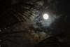 Moon among clouds