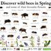 MYN poster on Spring Bees by Nico's wild bees & wasps