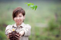 Soneva Forest Restoration Project, Chiang Mai 06