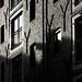 shadows by John_Beswick