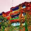 Colores del otoño en la ciudad