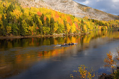 Rowing Through Autumn