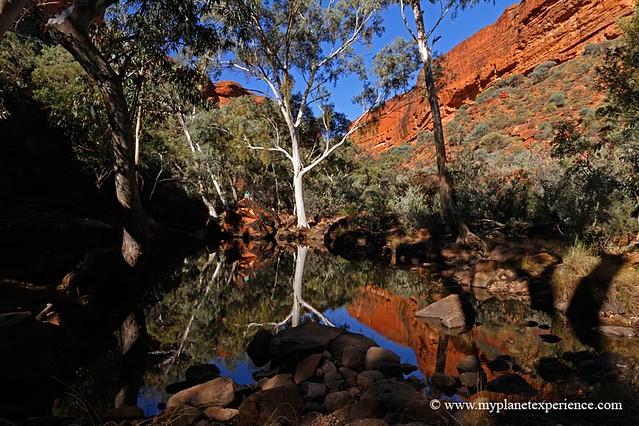 My Planet Experience - Permanent rainwater pool at Kings Canyon -  Watarrka National Park, Northern Territory, NT, Australia