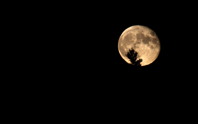 moon2 oct 9 2014