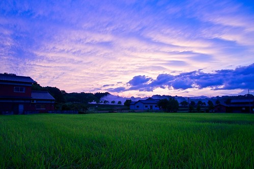 sunset japan clouds landscape rice sony 日本 ricefield kagawa 雲 風景 田んぼ 夕焼け 香川 manno apsc a6000 まんのう ©jakejung sel1670z e1670mmf4zaoss α6000 ilce6000