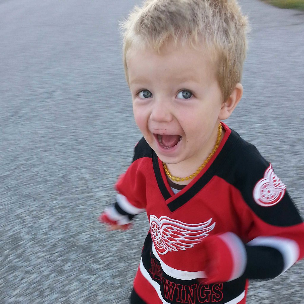Red Wings fan