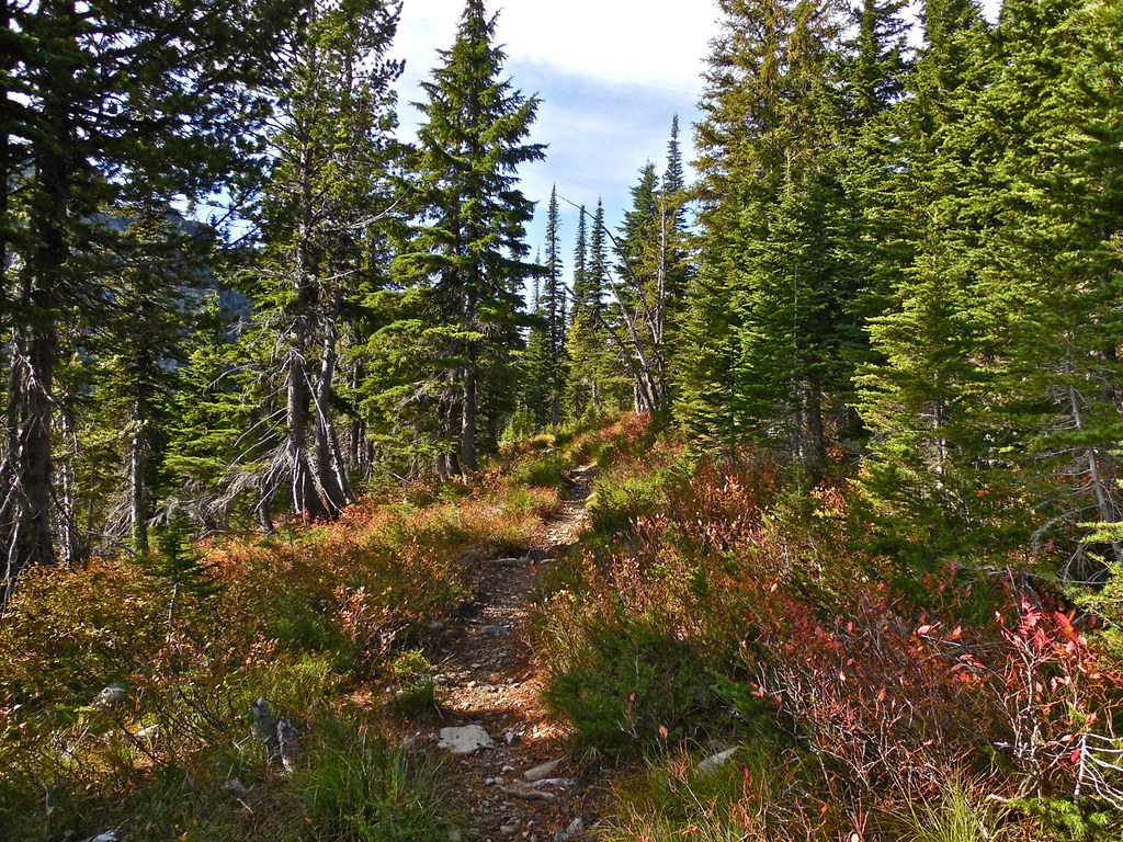 Trail 656 between Upper and Lower Geiger Lakes
