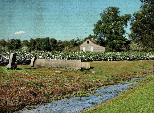 abandoned landscapes canal nc ditch south northcarolina graves southern hyde coastal cotton carolina fields tombs raisedgraves