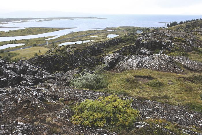 Iceland_Spiegeleule_August2014 116