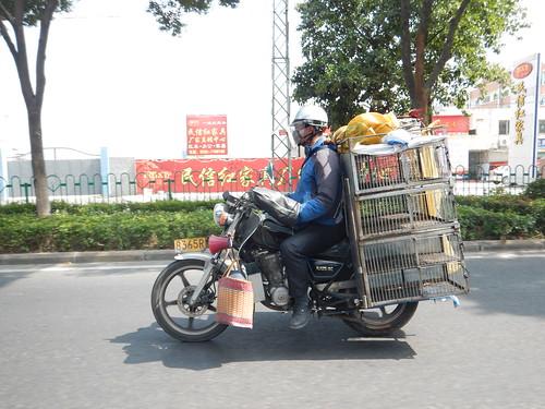 China - Xiamen Scenes (2)