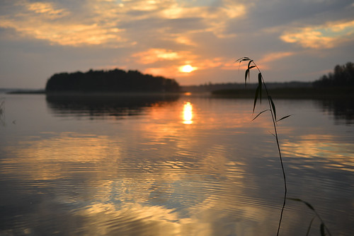 sunset lake reflection water fog landscape island mirror evening cloudy calm