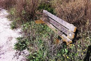 Noicattaro. Parco Cipolluzzi abbandonato front