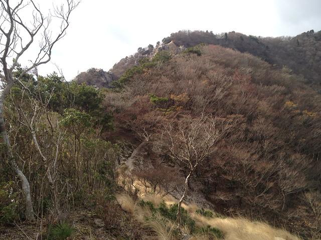 鎌ヶ岳 馬の背尾根 白ハゲ前 登山道