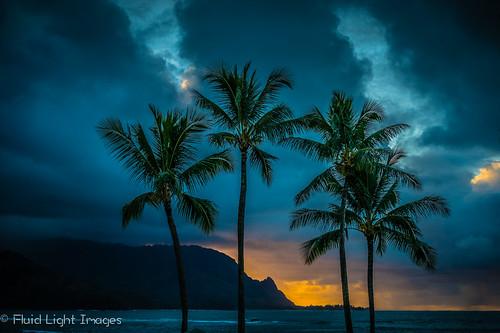 hawaii kauai adventures sonnartfe1855