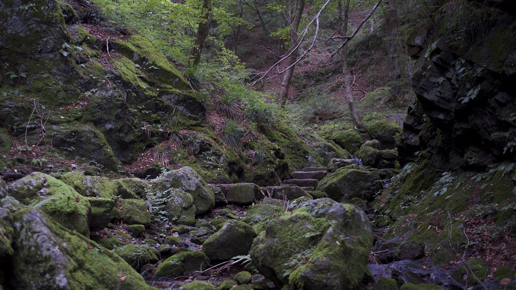 Rocky Pass