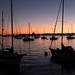 boats boats boats...