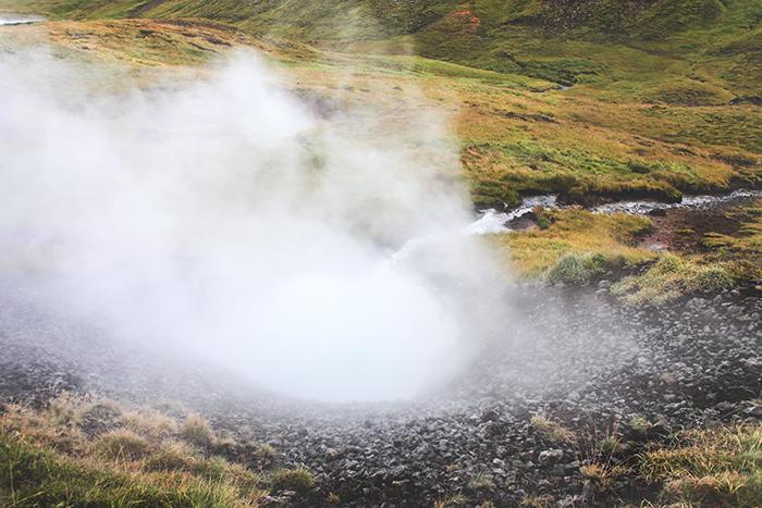 Iceland_Spiegeleule_August2014 035