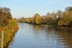 River Ouse II