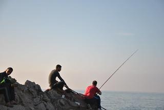 Peche mer algerie