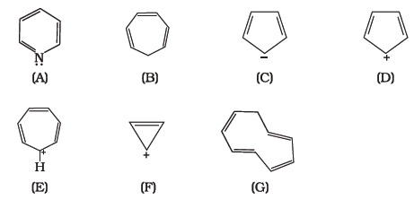 Class 11 Important Questions for Chemistry – Hydrocarbons – AglaSem
