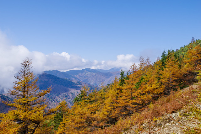 国師ヶ岳や甲武信ヶ岳は雲の中