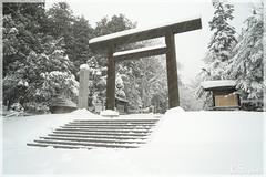 日本北海道.札幌_北海道神宮.42