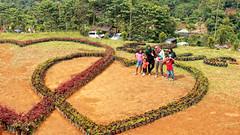 Love Garden Barusen Hills
