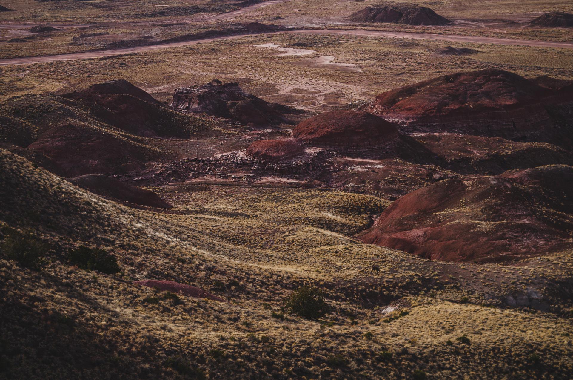 pustynia pstra usa