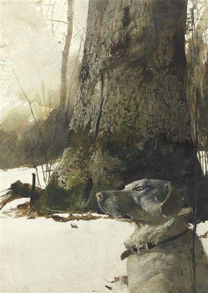Wyeth14