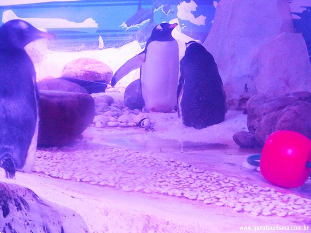 Sea Life London Aquarium 8
