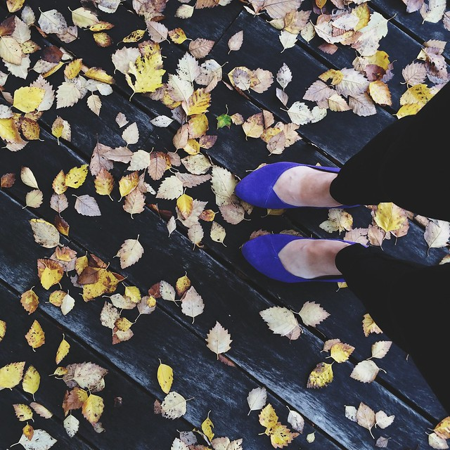 Fall is my jam. So are my @seamlyco no sweat pants and @toms shoes, usually classics - can you tell? #tomstan #juttiflats #ilovefall