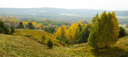 autumn trees panorama sun green fall grass landscape gold valley mound lithuania ruduo lietuva piliakalnis žalia nikond200 giedra suvalkija medžiai saulė peizažas žolė šešupė sūduva kalvos auksas kalneliai liubavas slėnys