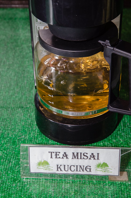My favourite drink at Tanah Aina, the Misai Kucing tea