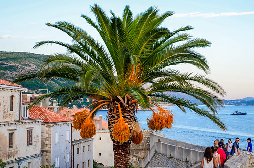 Dubrovnik Old Town-15