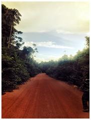 Linden/Lethem Road