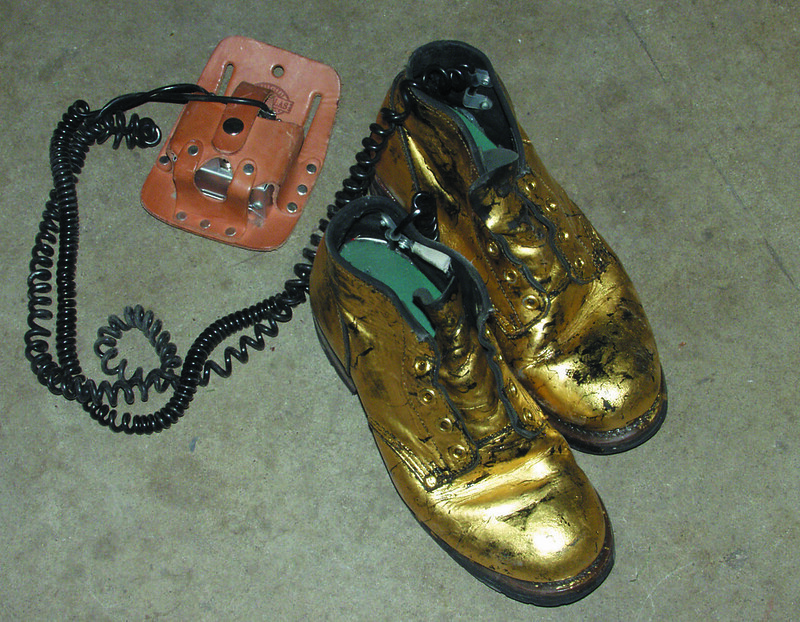 Gold Boots from Elliott Earls Eye Sling Shot Lions
