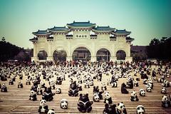Panda Tour in Taipei at C.K.S. Memorial Hall
