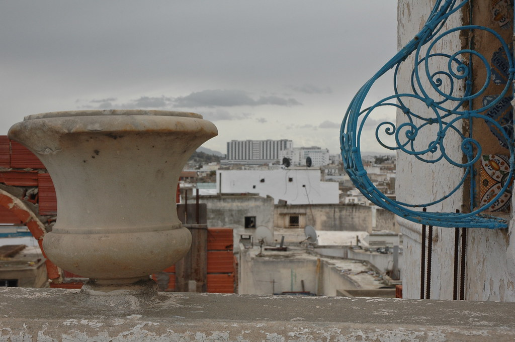 Tunis medina from rooftop