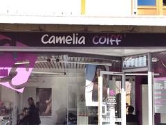 Camelia coiff'