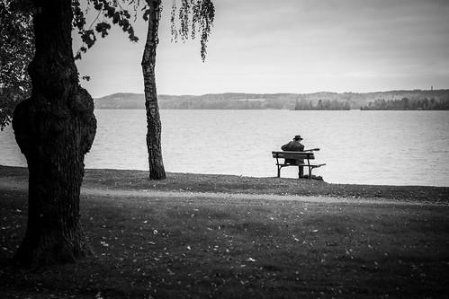 park autumn blackandwhite lake tree suomi finland bench landscape koivu october scenery view guitar overcast birch puu tampere maisema guitarplayer puisto syksy järvi pyhäjärvi lokakuu hatanpää canon6d