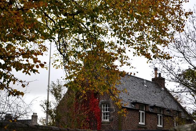 Elphinstone road Aberdeen