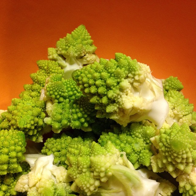 Last CSA share pickup of the year. Got a head of romanesco cauliflower. Not sure if we should eat it or smoke it.