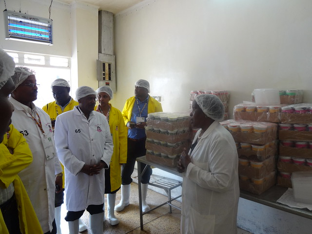 African Dairy Value Chain Seminar field visit