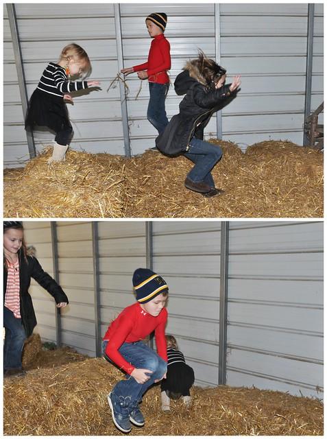 PicMonkey Collage24