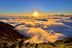 雲海 Sea of Clouds
