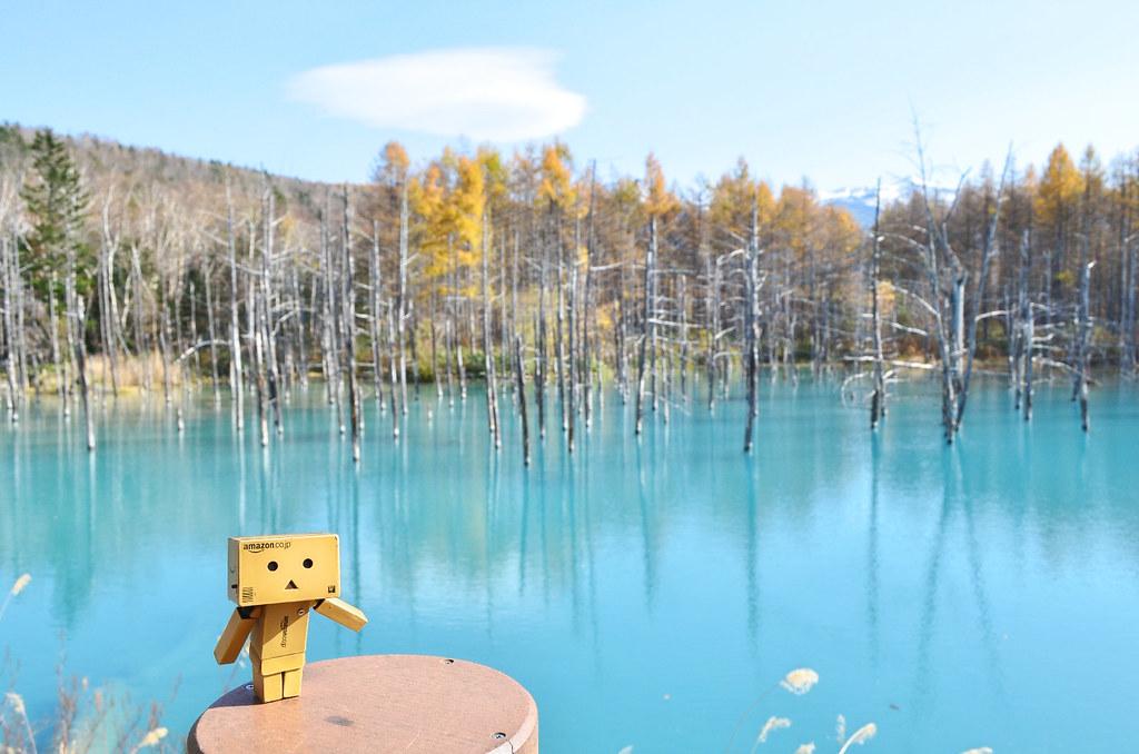青い池 (7)